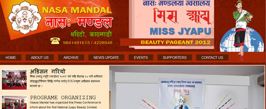 Web Design of Miss jhyapu nepal